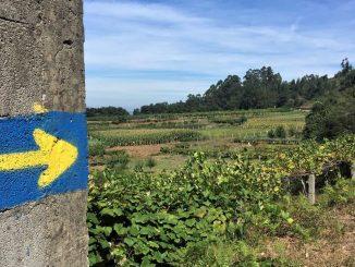 Camino Portugés to Santiago De Compostela